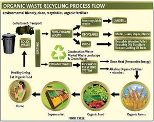 organic-waste
