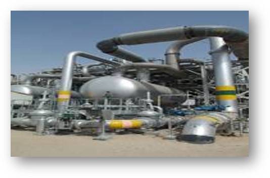 """Environmental Impact Assessment Study for Fluor Kuwait Company for the project """"New Booster Station BS-171 West Kuwait"""". 2009-2010"""